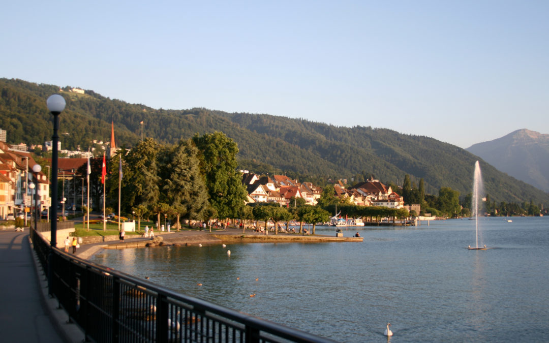 Компании для русских резидентов в Швейцарии- что нужно знать.